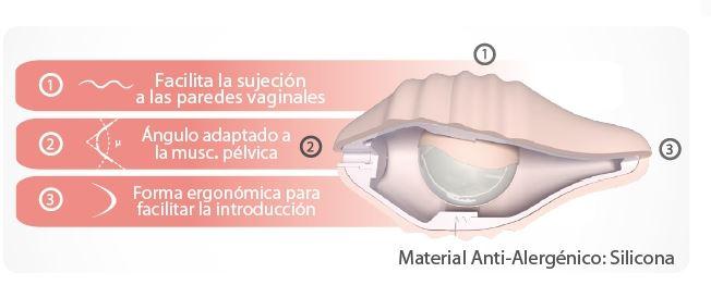 pelvix interior